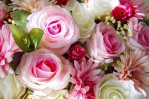 The Best Flowers for Your Zodiac Sign